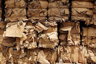 Baled-cardboard-shutterstock